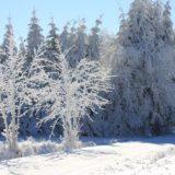 Visiter l'Auvergne : activités incontournables en hiver